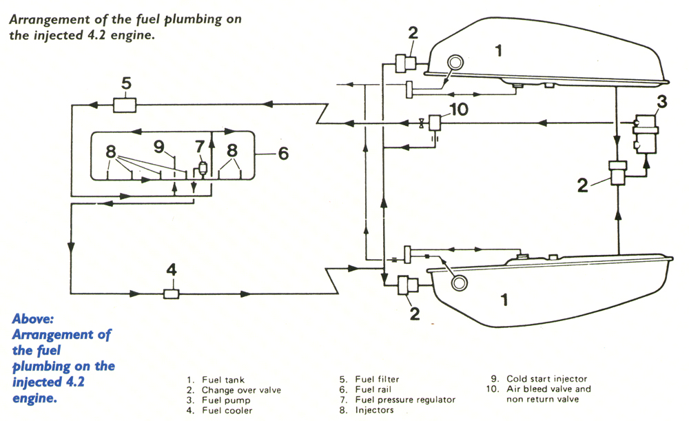 jaguar fuel pressure diagram wiring diagram for light switch u2022 rh prestonfarmmotors co jaguar fuel system diagram Jaguar Animal Diagram